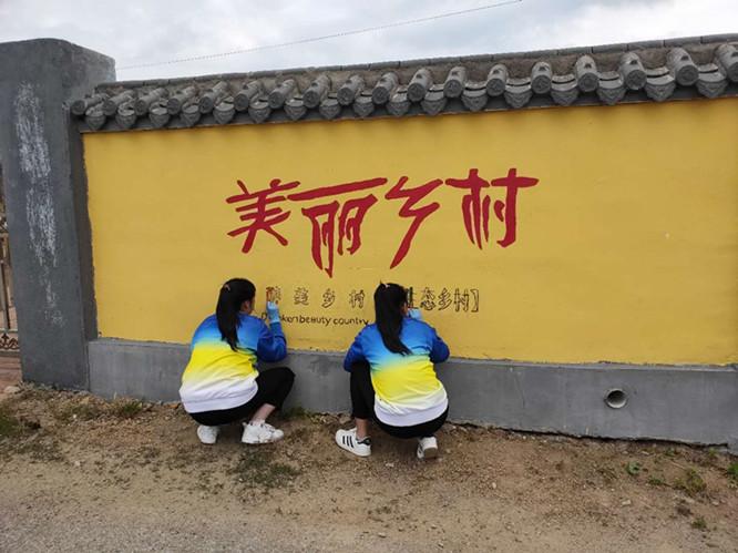 大学生到村里义务绘制文化墙 设计的内容既好看又传播知识