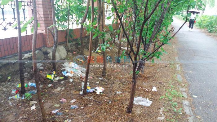 几场运动会后 这所学校外的绿化带里被扔了不少垃圾