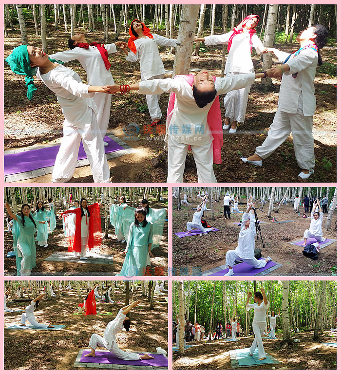 新宾青松岭举办首届森林瑜伽节 百余名爱好者跟着自然做运动