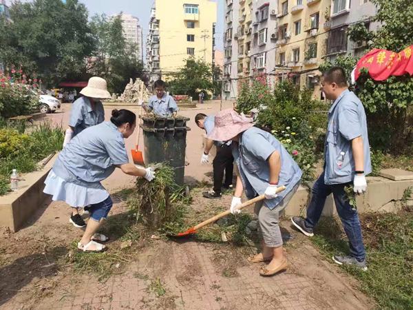 党员活动日深入一线义务服务 让城市更加洁净美丽