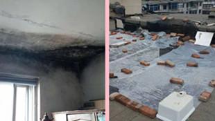 居民家漏雨棚頂長毛 維修部門回復稱拖欠了維修費