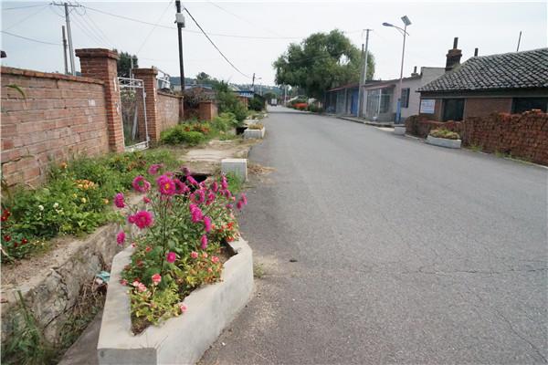 """家家有花、步步有景 抚顺后孤家子村的""""颜值""""逆袭之路"""