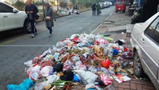 前物业带着垃圾桶走了 现物业怕被偷不放 这个小区现在遍地垃圾
