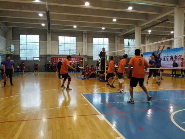 老当益壮!辽宁省老年人气排球赛上 抚顺男女队双双传捷报