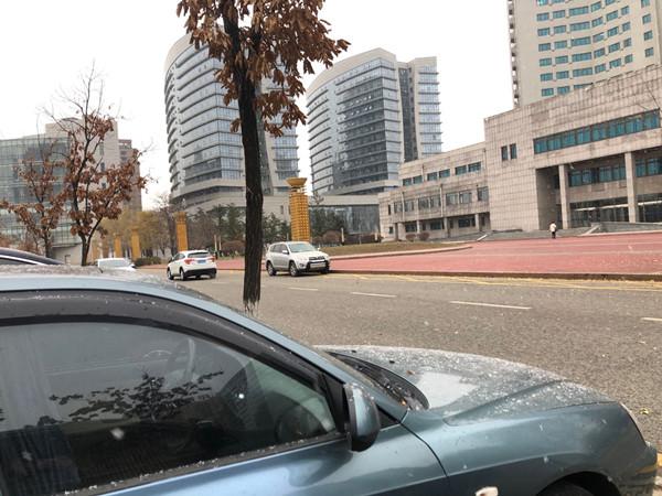 出行注意安全!抚顺市区迎来入冬第一场雪 气象局发布道路结冰黄色预警