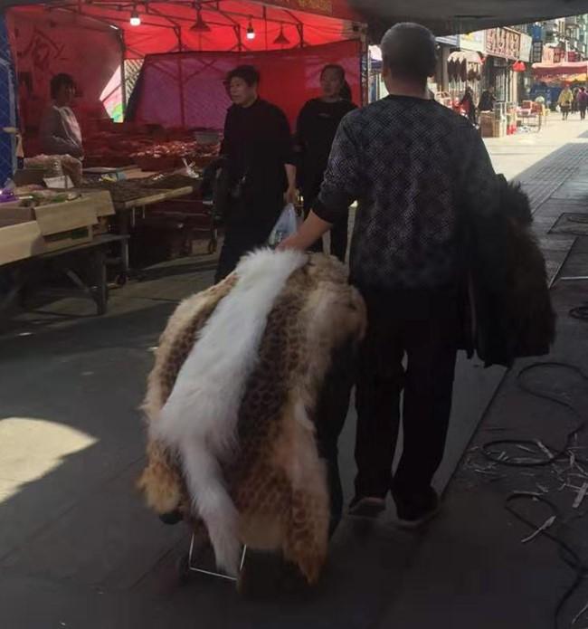 """一男子市场售卖""""野生""""兽皮  多人询问无人买:八成是假货"""