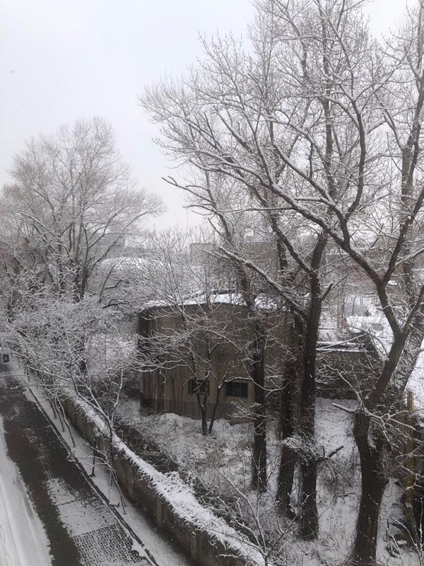 雪后道路湿滑交通事故增多 抚顺多条高速封闭