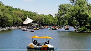 六一儿童节劳动公园热闹非凡 游船尤为受宠队伍排出弯