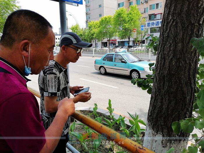 """【追踪】相关部门查看被钻眼树木并报警 将对树木进行""""医疗抢救"""""""