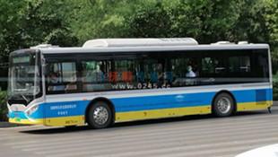 """88路公交线路""""上新""""啦 5台新能源车 车内有多项智能设施"""