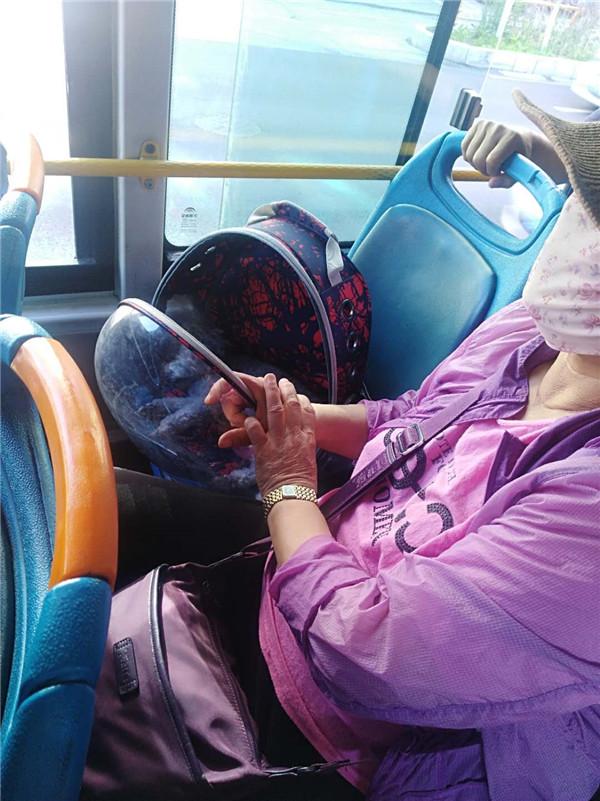 带宠上公交车,还给狗占座位