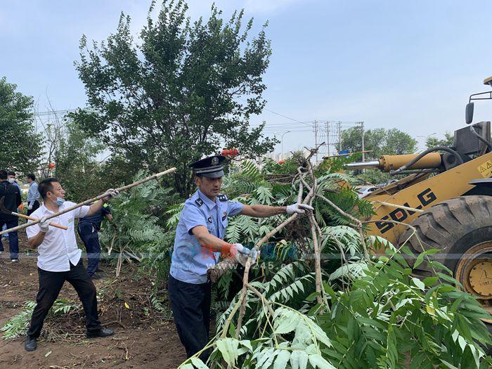 志愿者清理垃圾杂草 道路整洁了 居民舒心了