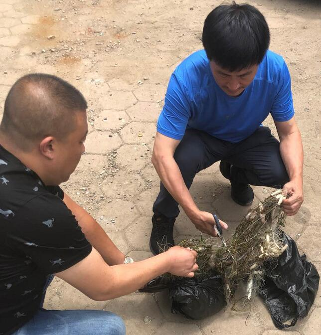 抚顺严厉打击渔业违法行为 已有禁用渔具被公开销毁