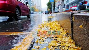 下雨打雷刮风降温 抚顺入冬前奏怪热闹的