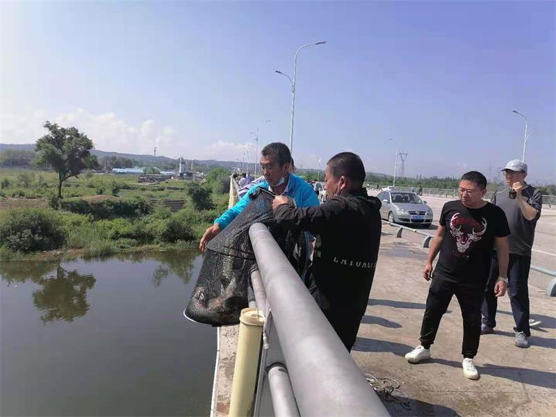 打击浑河流域非法捕鱼行为 抚顺在行动