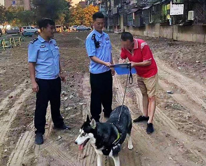 抚顺公安全面规范养犬 整治持续不断