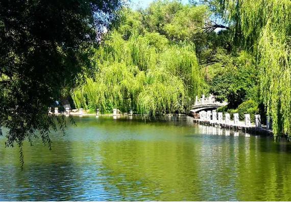 抚顺劳动公园:河水潺潺  秋韵如画